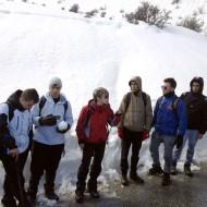 Ανιχνευτικό Εργαστήριο Ασφαλούς Πεζοπορίας στο Μεσορρούγι Αχαΐας (Φεβρουάριος 2013)